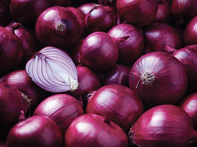 Onion Irrigation