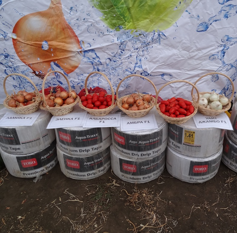 Photo Drip Irrigation for Russia